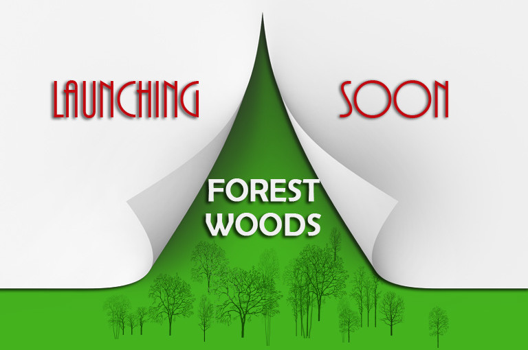 Forest Woods